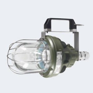 PORTABLE LIGHT/LED EVA LED EX ZONE 1